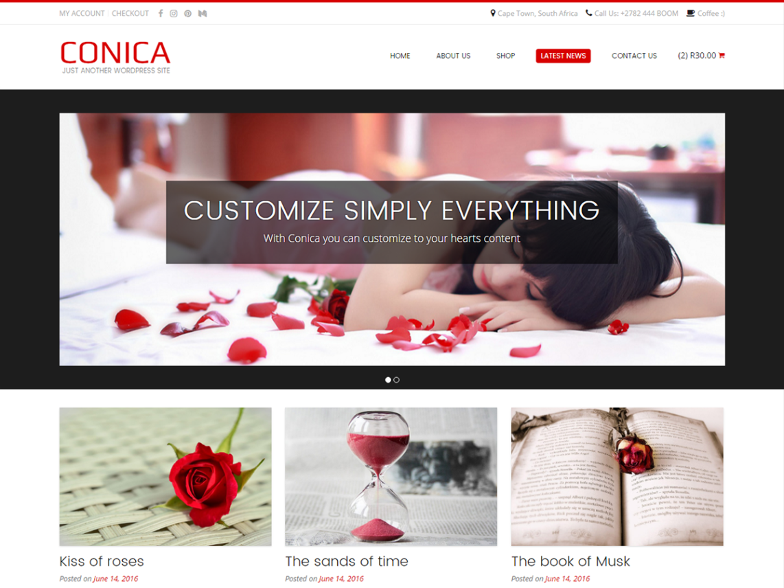 free wordpress theme conica