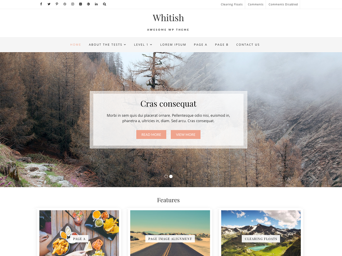 free wordpress theme whitish lite