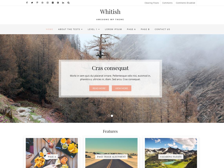 free wordpress theme whitish lite