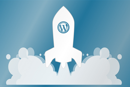 Wordpress Advantages